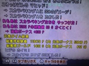 20130808-112437.jpg